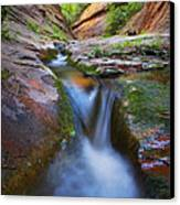 Energy Canvas Print by Peter Coskun