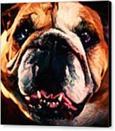 English Bulldog - Painterly Canvas Print by Wingsdomain Art and Photography