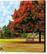 Enjoying Nature Canvas Print by Camille Lopez