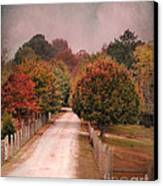 Enter Fall Canvas Print by Jai Johnson
