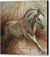 Escape Canvas Print by Silvana Gabudean