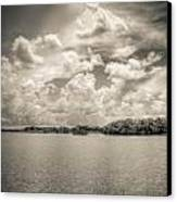 Everglades Lake 6919 Bw Canvas Print by Rudy Umans