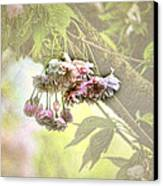 Everyday Blessings Canvas Print by Bonnie Bruno