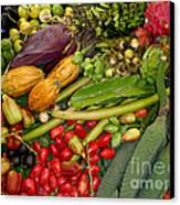 Exotic Fruits Canvas Print by Carey Chen