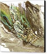 Explore Canvas Print by Karina Llergo Salto