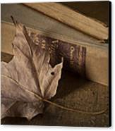 Fading Canvas Print by Amy Weiss