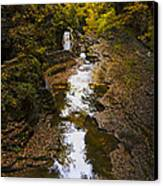Fall Colors Canvas Print by Eduard Moldoveanu