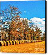 Fall Hayfield Canvas Print by M Glisson