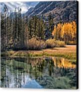 Fall Reflections Canvas Print by Cat Connor