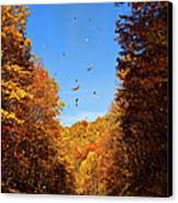 Falling Fall Leaves - Blue Ridge Parkway Canvas Print by Dan Carmichael