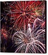 Fantastic Fireworks Canvas Print by Garry Gay