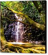 Fantasy Forest Canvas Print by Karen Wiles
