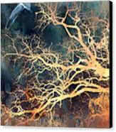 Fantasy Surreal Trees And Seagull Flying Canvas Print by Kathy Fornal