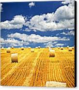 Farm Field With Hay Bales In Saskatchewan Canvas Print by Elena Elisseeva