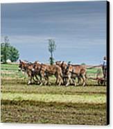 Fertilizing Canvas Print by Guy Whiteley