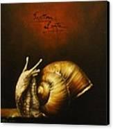 Festina Lente Canvas Print by Simone Galimberti