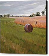 Field Day Canvas Print by Scott Harding