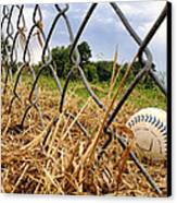 Field Of Dreams Canvas Print by Jason Politte