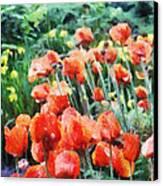 Field Of Flowers Canvas Print by Jeff Kolker