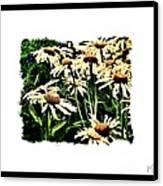 Field Of Love Canvas Print by Marsha Heiken