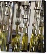 Filling Wine Bottles Canvas Print by Kevin Miller