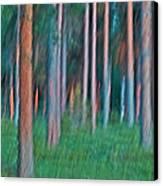 Finland Forest Canvas Print by Heiko Koehrer-Wagner