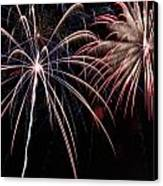 Fireworks 2 Canvas Print by Andrew Nourse