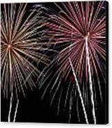 Fireworks Canvas Print by Andrew Nourse
