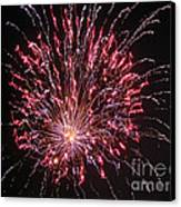 Fireworks For All Canvas Print by Terry Weaver