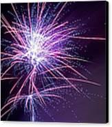 Fireworks - Purple Haze Canvas Print by Scott Lyons