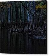 Fisheating Creek 28 Canvas Print by Carol Kay