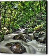 Flooded Small Stream  Canvas Print by Dan Friend