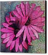 Floral Fiesta  Canvas Print by Variance Collections