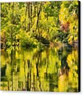 Florida Jungle Canvas Print by Christine Till