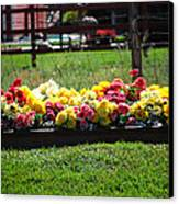Flower Bed Canvas Print by Holly Blunkall