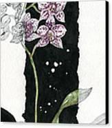 Flower Orchid 04 Elena Yakubovich Canvas Print by Elena Yakubovich