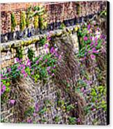 Flower Wall Along The Arno River- Florence Italy Canvas Print by Jon Berghoff