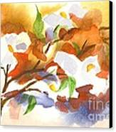 Flowering Dogwood IIi Canvas Print by Kip DeVore