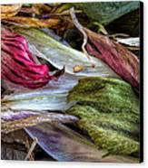 Flowers Canvas Print by Bob Orsillo