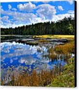 Fly Pond In The Adirondacks II Canvas Print by David Patterson