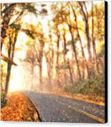 Foggy Fall Wonderland - Blue Ridge Parkway II Canvas Print by Dan Carmichael