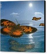 Follow The Sun Canvas Print by Jack Zulli