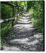 Forest Path Canvas Print by Dobromir Dobrinov