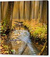 Forever Autumn Canvas Print by Ian Hufton