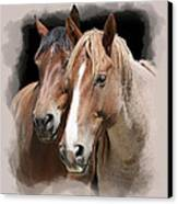 Forever Friends Canvas Print by Daniel Hagerman