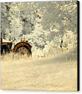 Forgotten Harvest Canvas Print by Luke Moore