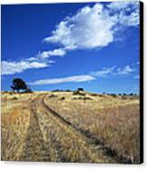 Forgotten Road Canvas Print by Julie Magers Soulen