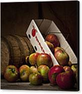 Fresh From The Orchard I Canvas Print by Tom Mc Nemar