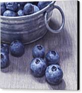 Fresh Picked Blueberries With Vintage Feel Canvas Print by Edward Fielding
