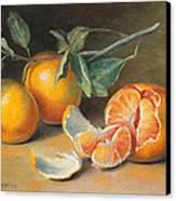Fresh Tangerine Slices Canvas Print by Theresa Shelton